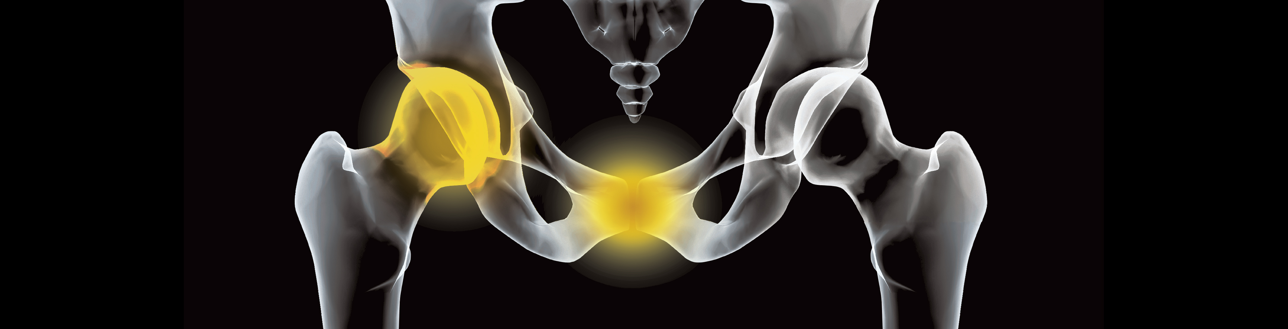 Sporting Hip and Groin - Andrew Wallis